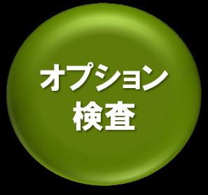 オプションボタン